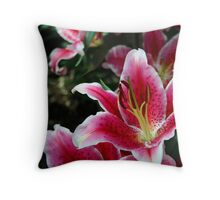 Multi Colored Throw Pillow