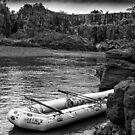 Safari V - monochrome by photograham