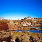 Mountain Path by Mark Claridge