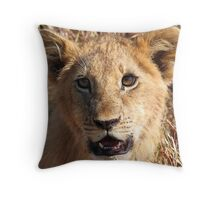 Lion Cub Portrait, Maasai Mara, Kenya  Throw Pillow
