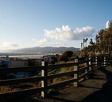 Malibu Hills by randomoasis