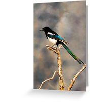 Colorful Magpie - The World Isn't Black & White Greeting Card
