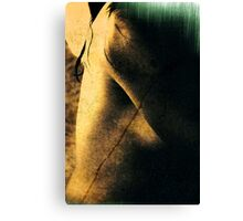 Reading nude Canvas Print