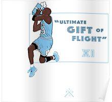 """Ultimate Gift Of Flight """"Pantone"""" XI Poster"""