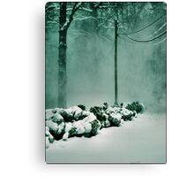 Winter Magic Canvas Print