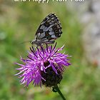 Seasons Greetings by 29Breizh33