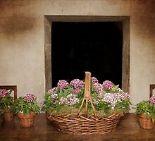 Flower Baskets by Elaine Teague