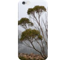 Fog, Mt Wellington, Tasmania Australia iPhone Case/Skin