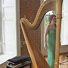 Celtic Harpist & her Harp by Riihele