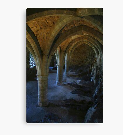 dungeon Canvas Print