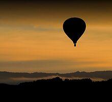 Morning by John Dalkin
