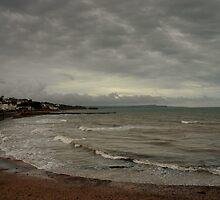 Dawlish - Devon by Craig Wilson