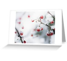 Snowy Berries Greeting Card