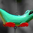 Croc by Tony Hadfield