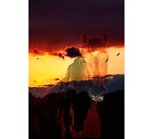 Geno / Bonita Sunset Horse # 1 ~ FOR MY MAN GENO!!!!! Photographic Print