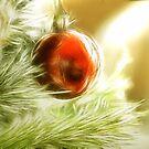 Essence of Christmas by shalisa