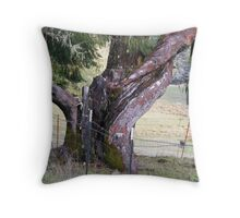 Burles and Barbed Wire Throw Pillow