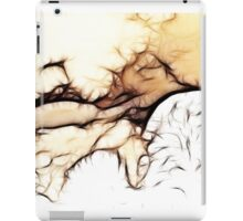 Snowstorms and Treetops iPad Case/Skin