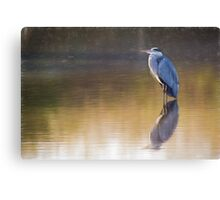 Grey Heron (Colour Pencil Effect) Canvas Print