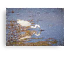 Little Egret (Colour Pencil Effect) Canvas Print