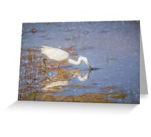 Little Egret (Colour Pencil Effect) Greeting Card