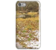 Bear Creek in Winter iPhone Case/Skin