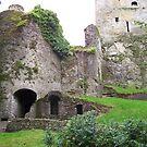 Blarney Castle by Calysar