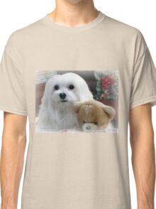 Snowdrop  the Maltee Classic T-Shirt