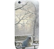 All is Calm - All is Bright iPhone Case/Skin
