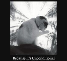 Because it's Unconditional by Craig Shillington