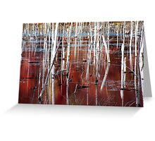 Automn swamp Greeting Card
