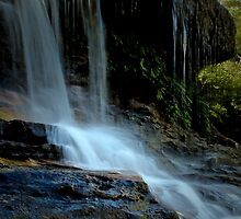 Weeping Rock  by Rosalie Dale