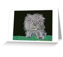 What????? Greeting Card