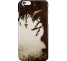 A winter day iPhone Case/Skin