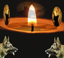 CANDLELIGHT MY DOG PASTE IN ON DIFFERENT WAYS ,ALL FREEWARE by trysocio