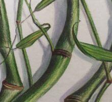 Crook Stem Bamboo Sticker