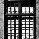Window Shade by Jhug