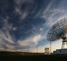Stanford Dish by Christophe Testi