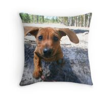 The Chase. Throw Pillow