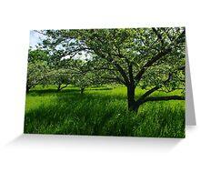 Apple Meadow Greeting Card
