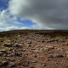 Another View from Trail up to top of Slievenamon, Tipperary by Mark O'Toole