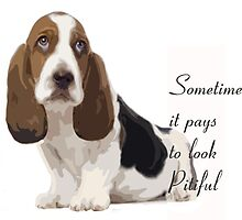 Pitiful puppy basset hound by IowaArtist