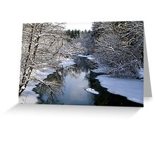 Winter Blankets Spring This Day Greeting Card