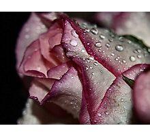 rasberry ripples Photographic Print