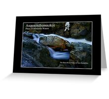 Aquamchumaukee Poster Greeting Card