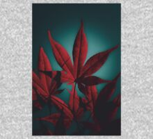 Japanese Maple in Crimson Kids Clothes