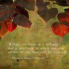 Stillness Within by Tanya B. Schroeder