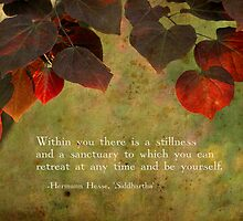 Stillness Within by Tanya B. Schroeder