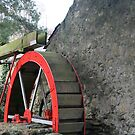WATER WHEEL.  by ccrcats