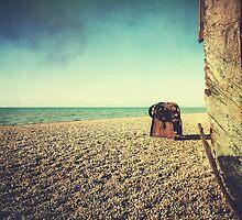 Brighton Coast by MattHollinshead